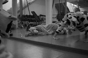 Tierische Fitness